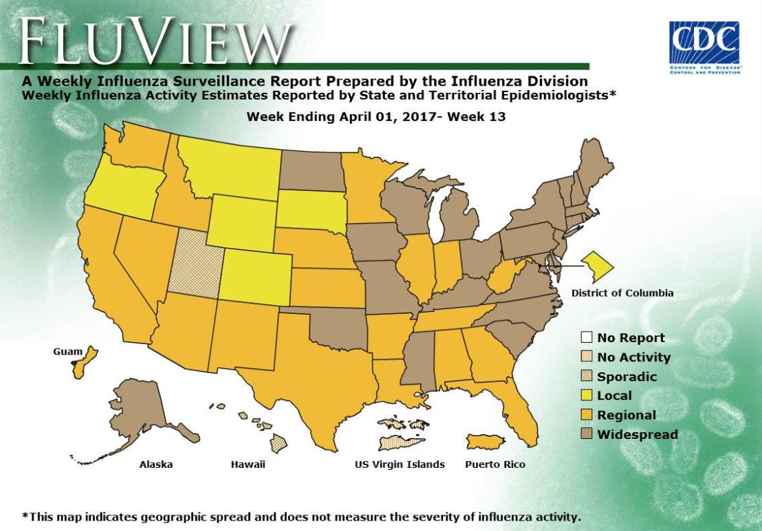 Flu activity remains elevated in parts of the United States.