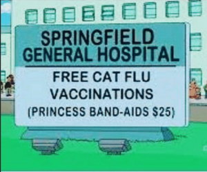 Simpson's episodes predict virus outbreaks Screen-shot-2017-09-13-at-10-39-58-pm